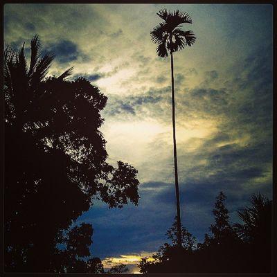 Sun_set at wattegama Sri_lanka Nature Best  photo love