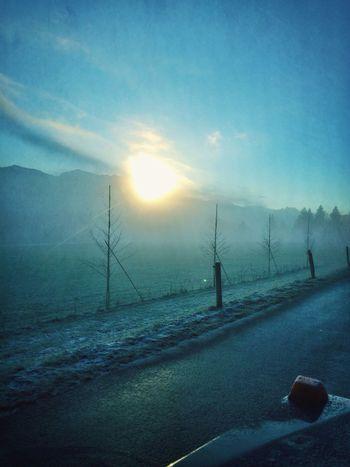 Sunrise Fog Goodmorning Sun_collection