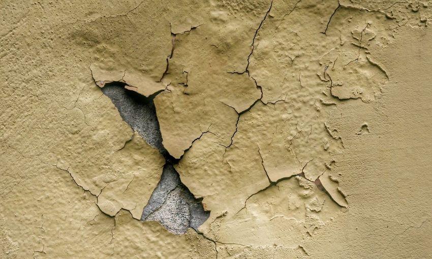 Detail shot of peeled wall
