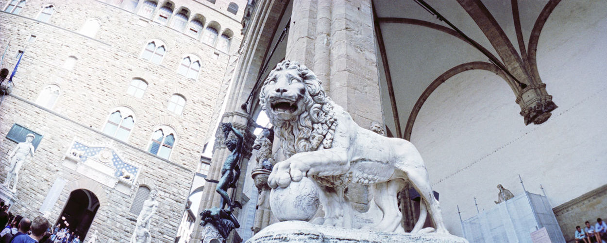 Panoramic Shot Of Lion Statue In Cathedral