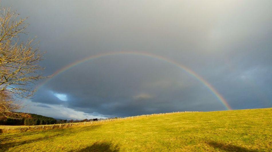 Over the rainbow Rainbow