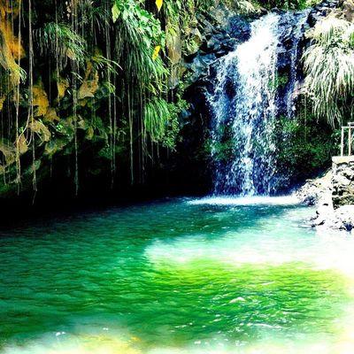 Waterfall Annandale Grenada Islandlivity Islandlife Island Ourbestshots Instagramhub Instagram Iphoneonly IPhone