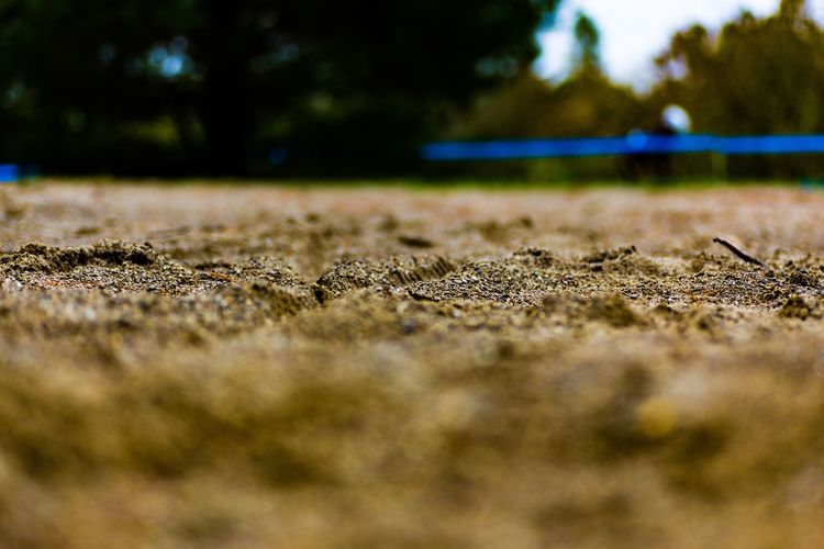 EyeEmNewHere Pattern No People Close-up Nature Day Outdoors Grass Defocused Tree Sky Bokeh Bokeh Photography Bokeh Background Bokeh Nature Sand Depth Of Field Dof Dofaddicts Dof Nature Cx Cyclocross