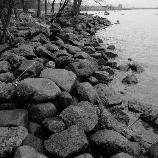 Был одинокий, а тут графично собраны валуны . Залив дача камни петергоф чб чернобелое монохром спб петербург graphically stones bnw blackandwhite monochrome finnishgulf peterhof spb petersburg fujifilm_xseries fujifilm x20