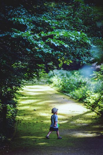 Deep forest🌳 Local ジブリの世界 Summer ととろの森 Woods DEEP FOREST Boys Plant Full Length Childhood Tree Child Leisure Activity Water Nature Outdoors