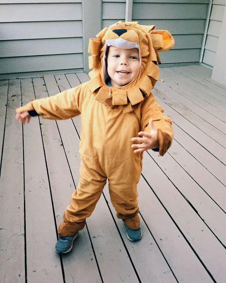 Portrait of boy wearing lion costume