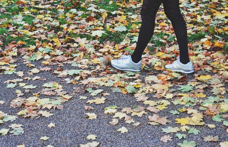 Low Section Human Leg Human Body Part One Person Shoe Real People Lifestyles People Nature Autumn Colors Autumn Day Weekend Activities Walking Around Leaves On The Ground Wearing Tights Black Tights Standing London Walking In The Park