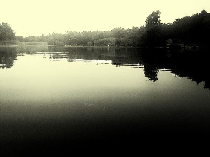 Peace. Bw_collection EyeEm Best Shots - Black + White EyeEm Best Shots - Nature EyeEm Nature Lover
