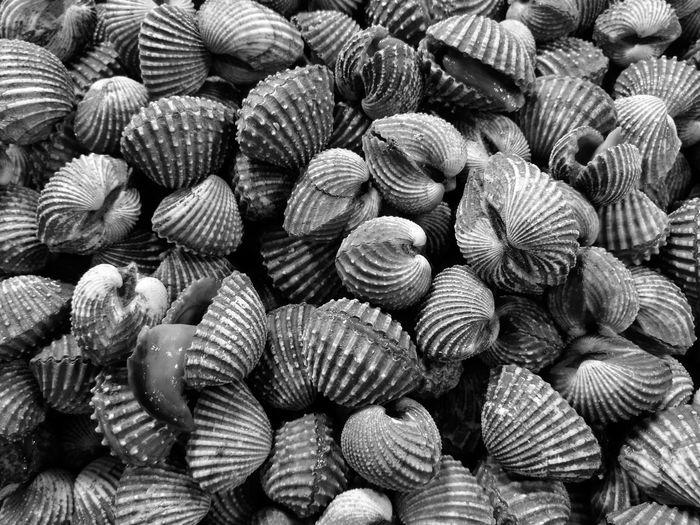 Full frame shot of cockle shells at market