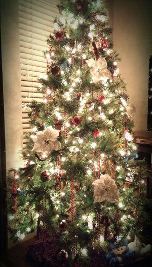 Best Christmas Lights MERRY⛄CHRISTMAS NEW BRAUNFELS TEXAS Christmas Time