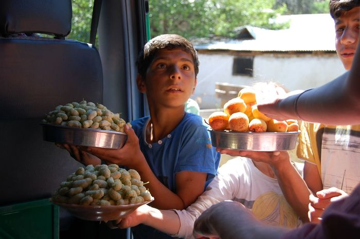 Apricot Children Basket Food Food And Drink Freshness Fruit Fruit Seller Healthy Eating Human Hand Mulberry Real People Young Adult