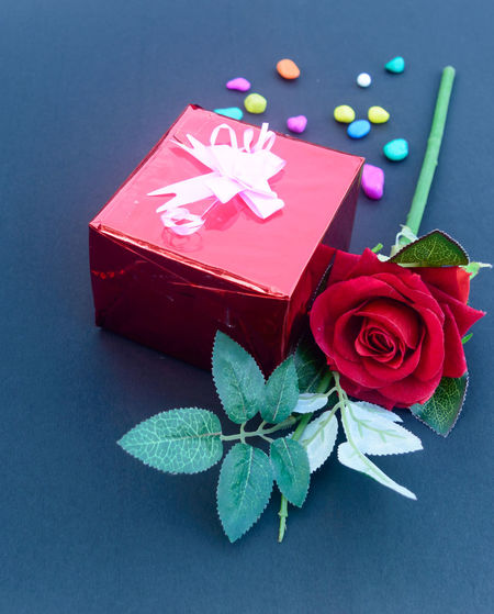 High angle view of red rose on blue table