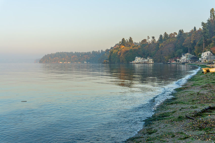 A autumn scene of the shoreline at Dash Point, Washington. Water Scenics - Nature Sky Beauty In Nature Tree Plant Tranquil Scene Tranquility Nature Mountain Day Non-urban Scene Idyllic Clear Sky No People Lake Land Outdoors Autumn Fall Shoreline Ocean Sea Dash Point