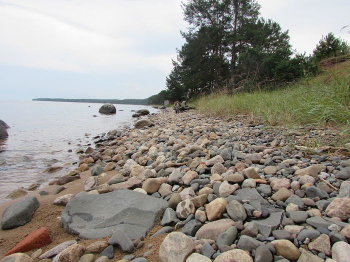 "I like to make holidays in small villages like this. On the Russian Rybreka is ""The fish river"". Because beside the beach are a lot of big shoals of fish. Curios  Holidays Homeland Karelia Nature Outdoors River Sand Stone Beach"