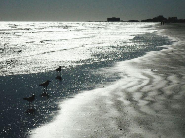 Galveston Island  Texas Beaches Surf Photography Relaxing Makesmesmile