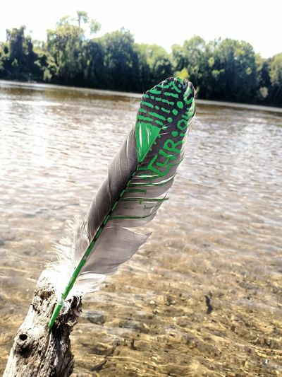 Adding a little color to this discarded feather. Feather  River James River Maidens Landing Paint Curious RVA RVASky Getting In Touch