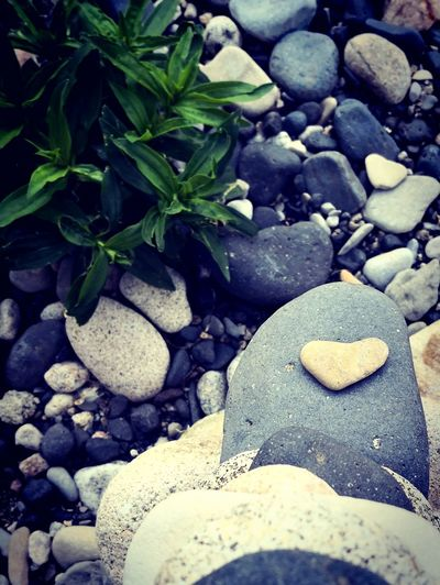 Galet Coeur  Heart Love Love ♥ Nature Nature_collection Nature Photography Naturelovers Riverside Pebble Pebble Beach Pebbles Cooltime Ardeche Ardeche River Ardeche France Ard Pebble Beach Beach Pebble Sand Rock - Object Shore Stone - Object Close-up Detail Calm EyeEmNewHere