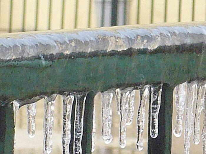 Frozen Cold