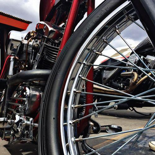 Bikerslife Biker Life Motorcyclelifestyle Motorcycleporn Motorcycle Photography Motorcycles Motorbike HarleyDavidsonMotorcycles Harley-Davidson Harley Davidson Harley Harleydavidson Bikers Motorcycle Spokes Motor