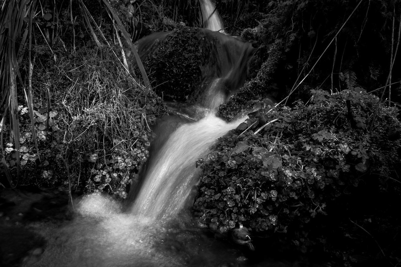 motion, long exposure, waterfall, water, forest, flowing water, beauty in nature, scenics - nature, rock, blurred motion, tree, rock - object, nature, land, solid, no people, day, flowing, environment, rainforest, outdoors, falling water, stream - flowing water, power in nature, running water