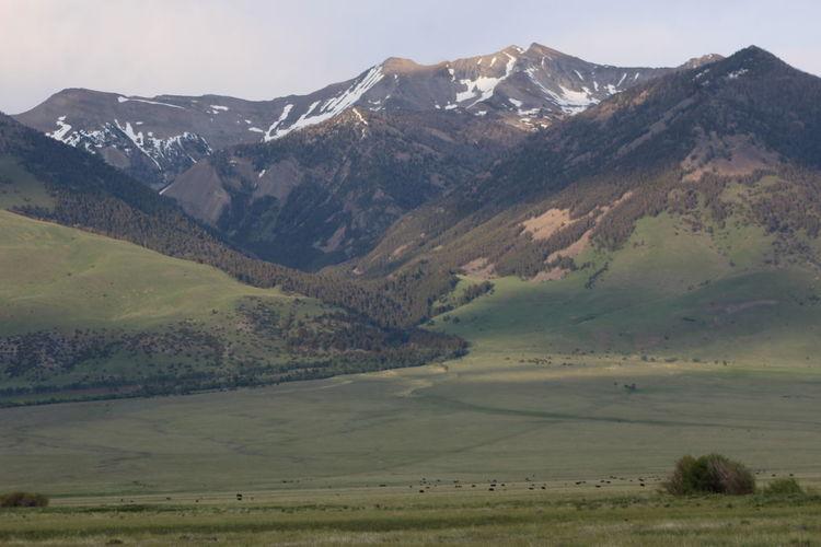 Ranch land near