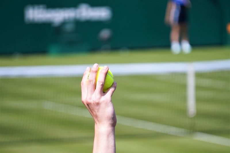 New balls please Tennis Tennis Ball Athlete Body Part Competitive Sport Day Focus On Foreground Grass Green Color Hand Human Body Part Human Hand Human Limb People Playing Playing Field Real People Sport Sportsman Team Sport