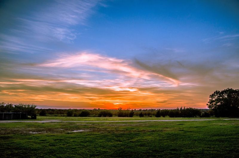 Big sky Texas Beauty In Nature Tranquility Nature Tranquil Scene Tree Sunset Grass Scenics Field No People Sky Landscape Cloud - Sky Outdoors Day Texas Skies Texas Landscape Texas Photographer Texas Texas Hill Country Texaslife Texas Made