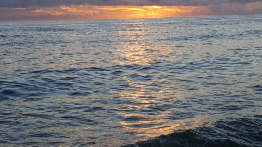 Water Wave Sea Nautical Vessel Sunset Beauty Beach Sailing Low Tide Horizon