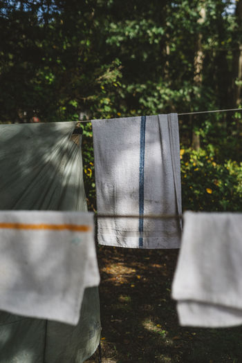 towels on a clothesline Plant Tree Nature Day No People Sunlight Outdoors Motion Land Blurred Motion Front Or Back Yard Close-up Growth Field Focus On Foreground Grass Textile Barrier Selective Focus Clothing