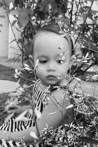 Baby Babygirl Baby In Nature Amaturephotography Amatuer Photographer Flower!