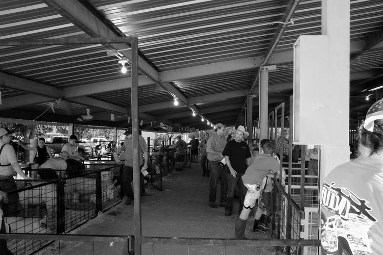 2016 Jefferson county Fair Fairbury Nebraska A Day In The Life B&w Street Photography Camera Work City Life Countyfair Cultures Fair Farm Life Group Of People Illuminated Leisure Activity Lifestyles Market Stall Medium Group Of People Nebraska Photography Rural America Shooting Photos