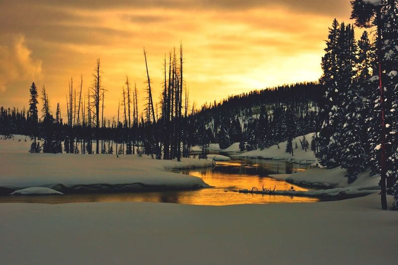 Winter Yellowstone Tadaa Community The EyeEm Facebook Cover Challenge