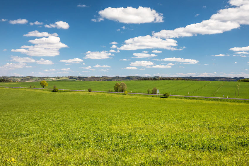 Agriculture Beauty In Nature Blue Sky Cloud - Sky Clouds Day Field Grass Green Color Green Color Growth Landscape Nature No People Outdoors Road Rural Scene Scenics Sky Spring Street Sunny Tranquil Scene Tranquility Tree