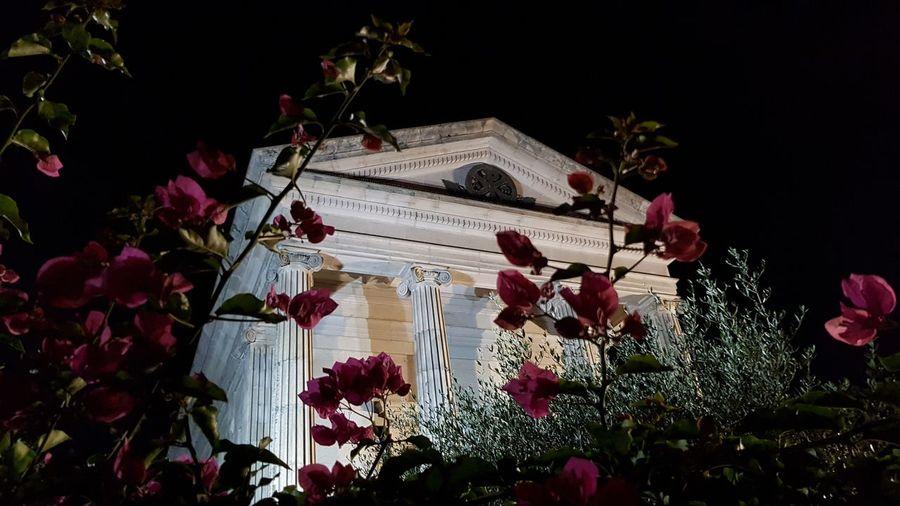 la soledad... Vigo, Galicia (España) #vigo #galicia #pontevedra #spain #españa El Castro Flower Tree Celebration Architecture