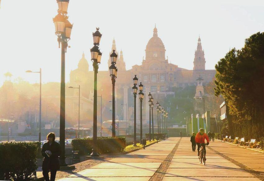 Barcelona National Art National Art Museum Sunlight