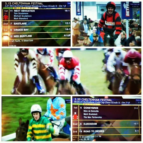 What a day!! Fellow OldCheltonian TomScudamore winning the APMcCoy , Coneygree winning the GoldCup & me betting on both winners ( sameprocedureaseveryyear ) + seeing TonyMcCoy in his last race there 😃👍 Just booked the Hotel for 2016, see you there my friends from CheltenhamCollege & @sebastianj1102 probably as well 😉 Plus Twickenham on the next day for the SixNations vs. Wales 😆
