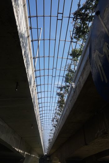 Low Angle View Architecture Ceiling No People Built Structure Indoors  Day Modern Sky EyeEmNewHere