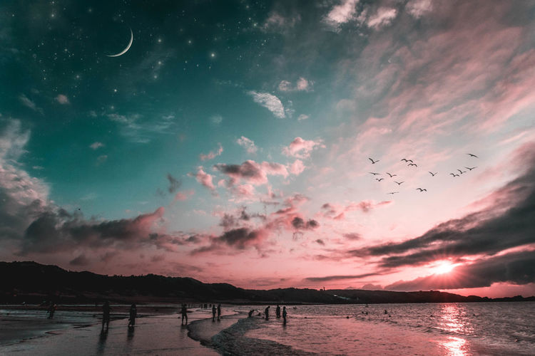 """Dream sky"" Beach Bird Day EyeEm Best Shots EyeEm Taiwan EyeEn Nature Lover Nature Nature Ocean Outdoors Sea Sky Star Star - Space Sunset Taiwan Water EyeEm Selects EyeEm Selects The Week On EyeEm"