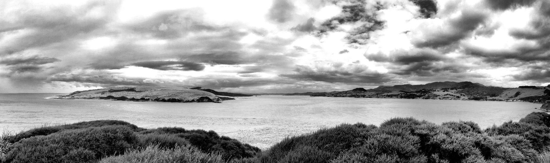 Blackandwhite Panorama New Zealand