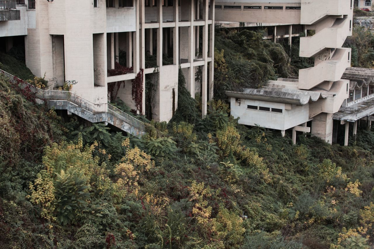 Abandoned Building By Trees