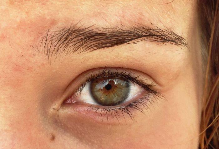 Eye Eyes