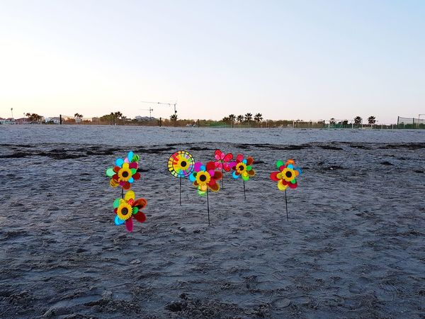 Beach Sky Hanging Multi Colored Outdoors Day Streamer No People playa beachPlayas People Toys Wind By The Sea Young Adult Toystagram Sand Sand And Sea Sand And Sky Sand And Beach Winter Sea Italy Venetogram Autumn Playing Field