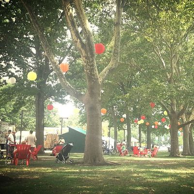 Relaxing afternoon Summer Sillymexican Philadelphia Theoval