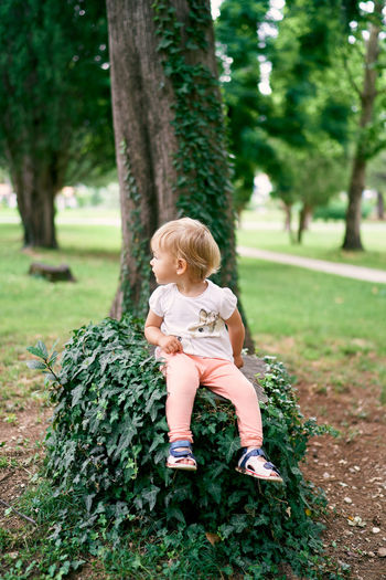 Full length of girl sitting on tree
