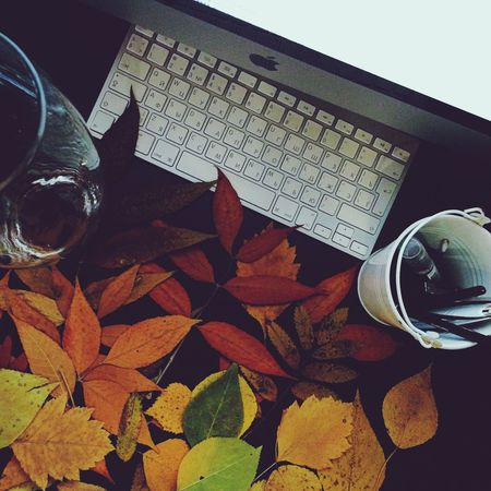 My Happy Place  Autumn Apple Beautiful