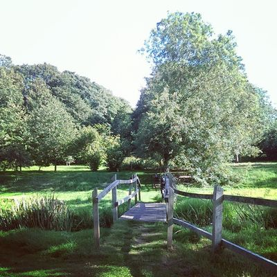 Walshingham Walshinghamgrounds Walshinghamabbey Grounds river green river stream bridge footpath HTC htc1 dayout
