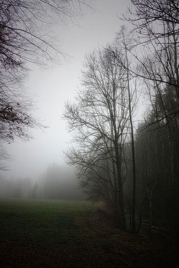 Landschaft mit