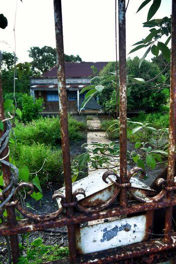 Case Créole Behind Bars Secret Garden ManmadeVsNature Nature At Your Doorstep Showing Imperfection