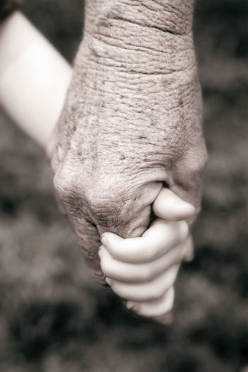 Grandparent holding grandchild's hand Adult Body Part Child Childhood Focus On Foreground Grandchild Grandmother Grandparent Grandparents Guardian Hand Holding Holding Hands Human Body Part Human Hand Parent People Selective Focus Unrecognizable Person Women
