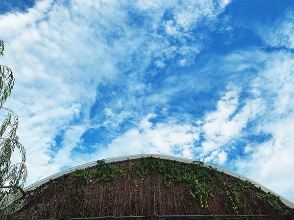穹頂 Cloud - Sky Sky Low Angle View Nature Day Built Structure Architecture